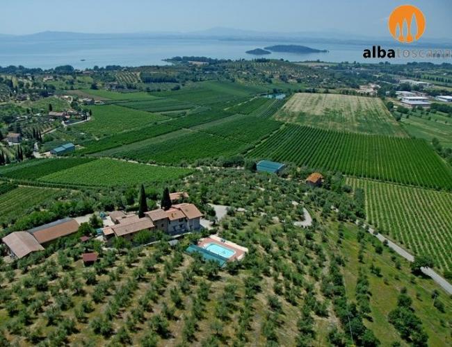 <h3><a href='https://www.alba-toscana.eu/it/st/122/'>Agriturismo in Umbria con vista sul Lago Trasimeno a Passignano sul Trasimeno Perugia</a></h3><p> Questo agriturismo in Umbria sorge in posizione panoramica tra Umbria e Toscana, tra le dolci colline che contornano il Lago Trasimeno. E' punto di partenza ideale per visitare le maggiori<a href='https://www.alba-toscana.eu/it/st/122/'> ...leggi tutto</a></p>